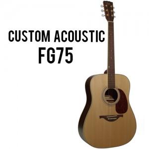 Custom Acoustic FG75