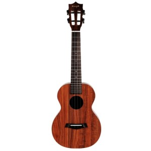 Enya Ukulele Package